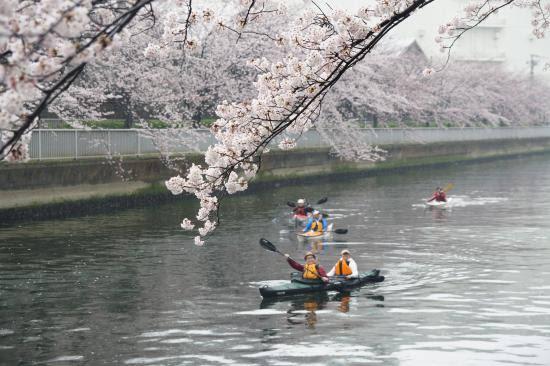 Kayaking in Tokyo